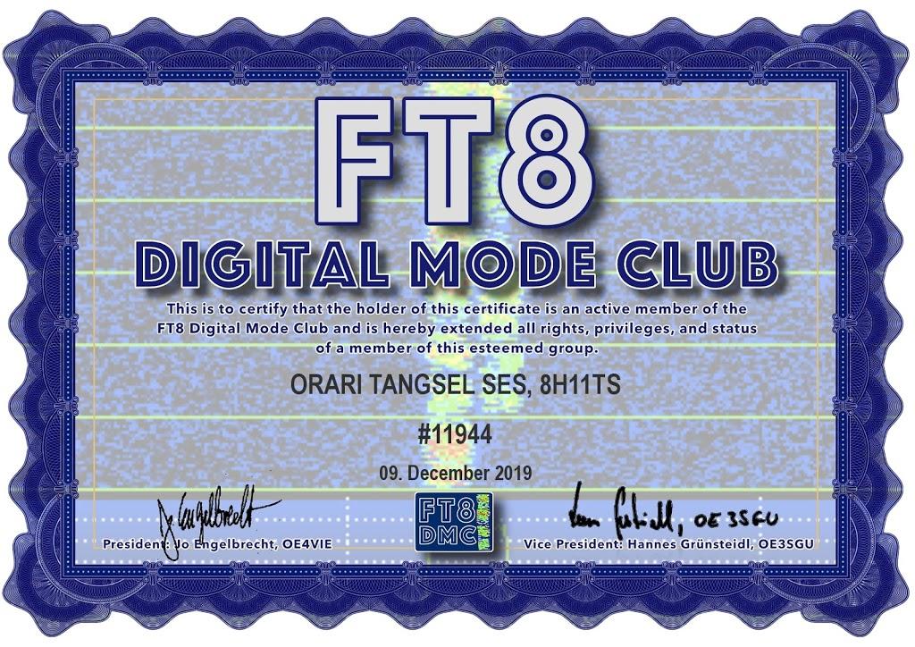 FT8 DMC 8H11TS